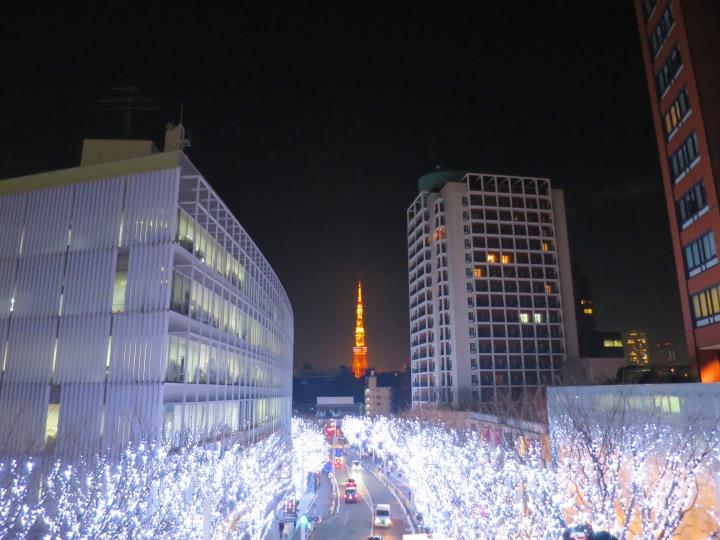 六本木 けやき通り クリスマスバージョン イルミネーション