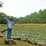 宮崎の最強パワースポット 「江田神社・みそぎ御殿・みそぎ池」に行ってきました!